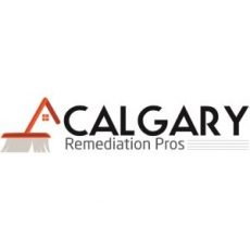 copy-of-calgary-remediation-pros